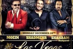 Moein, Shadmehr, Shahram  (11x14)