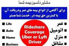 shahrzad banner copy